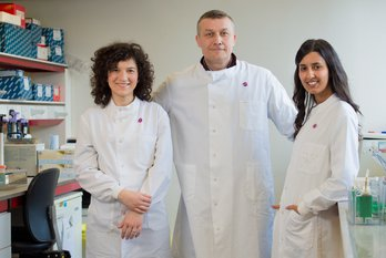 Three Leuka researchers