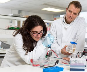 Leuka blood cancer researchers in the laboratory