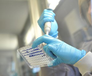 Lab work in a leukaemia research lab