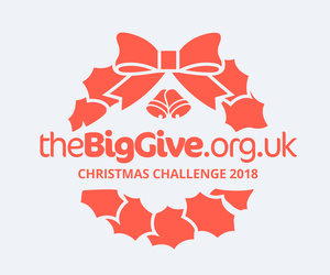 Leuka's Big Give Christmas Challenge fundraiser for leukaemia research